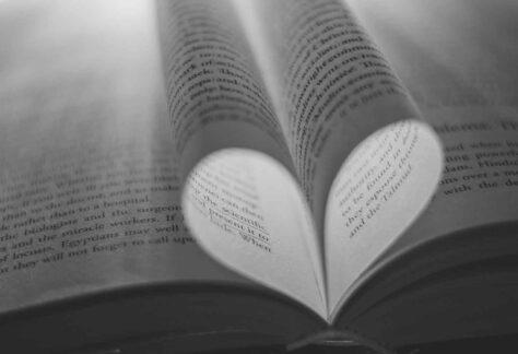Hojas de libro formando un corazon